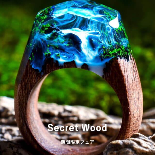 Seecred wood pop up fair